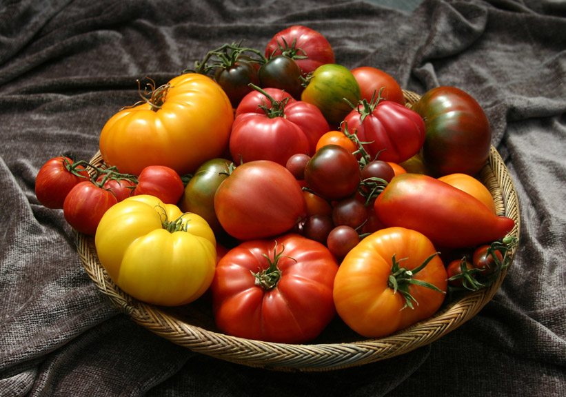 Tomato Basket on Brown small
