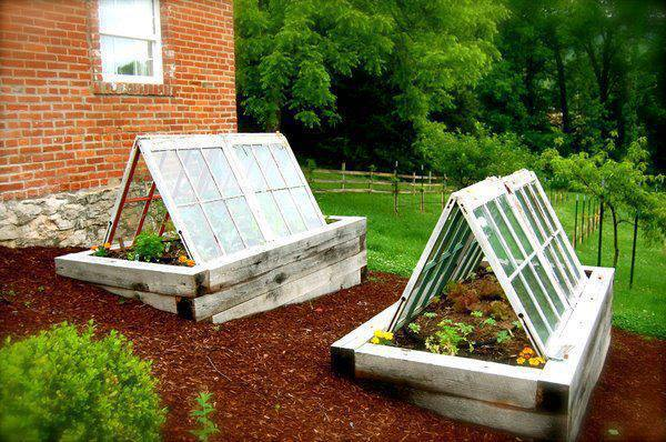 Winter Garden Innovation Using Old Windows To Extend Your