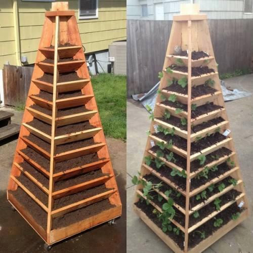 Growing Indoors Save Space and Make Your Own Vertical Garden Pyramid