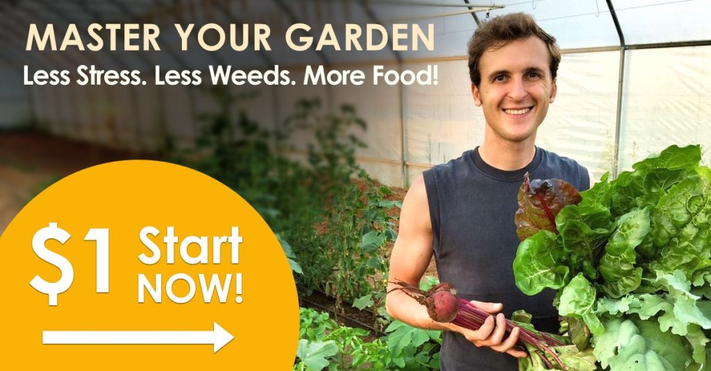 Master Your Garden: Less stress. Less weeds. More Food! Click here...